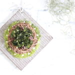plate-wreath