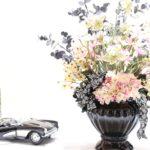 eucalyptus-daisy
