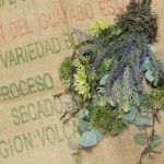 eucalyptus-and-lavender