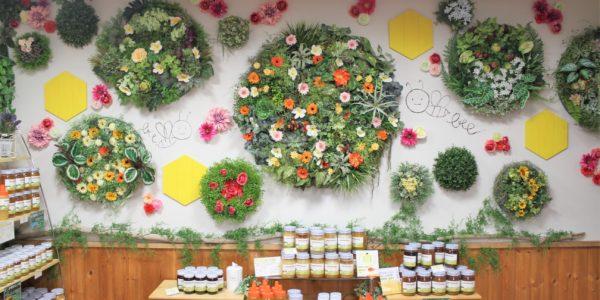 小樽でインスタ映えするフェイクグリーン壁面装飾