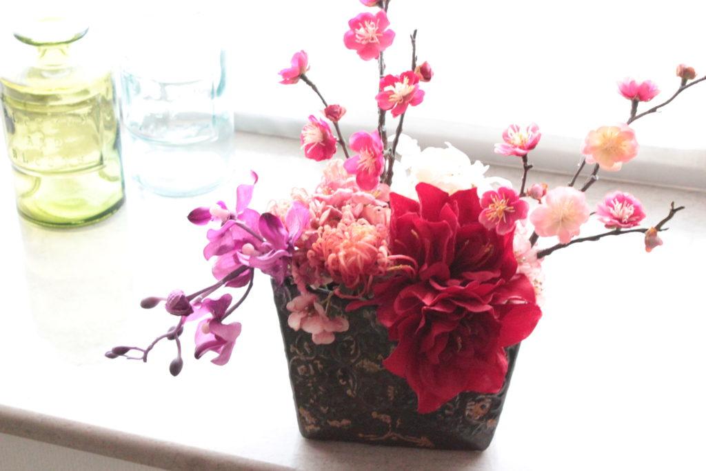 amaryllis-plumtree