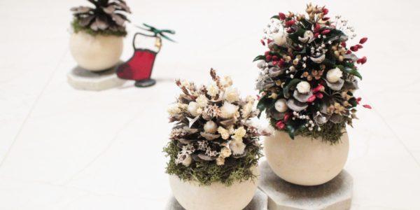 12/16~12/25まで☆大丸札幌でクリスマス ほか