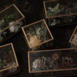 glass-giftbox